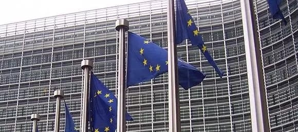 Guinea EU Referendum