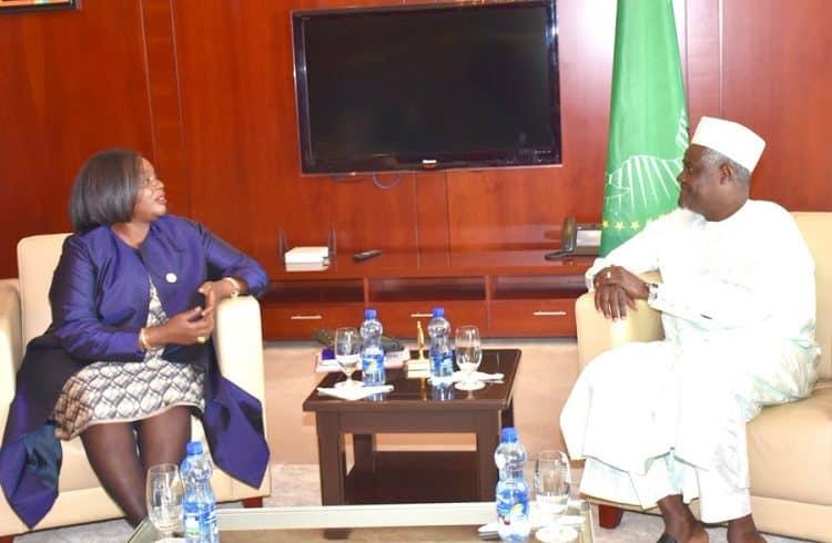 UNSC AU Kenya Djibouti