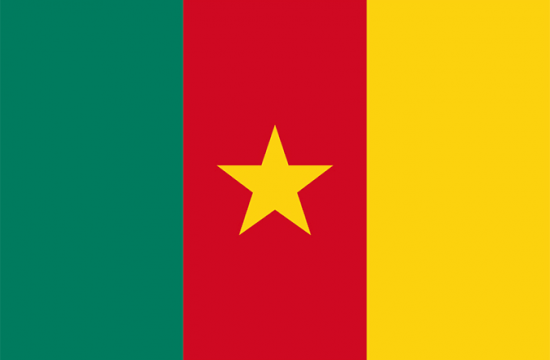 Accident,Cameroon,Death