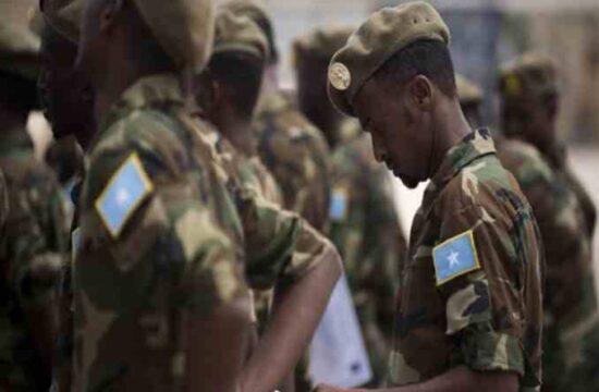 Somalia's military took part in the Tigray war,UN report