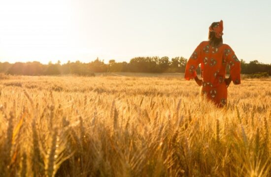 africa's agri business