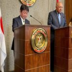 egyptian and japanese foreign ministers