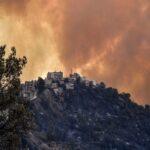 algeria wildfire