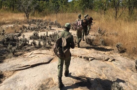 rangers in niassa national reserve, mozambique